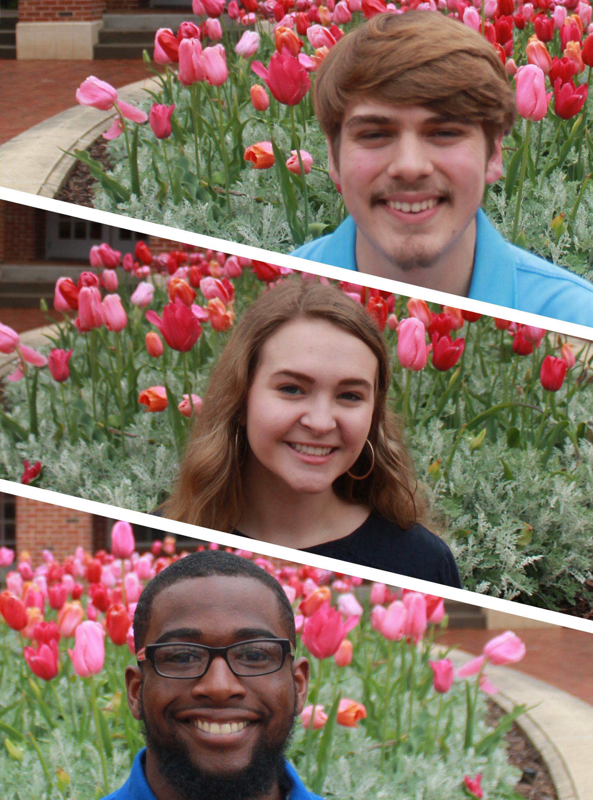 Lott Institute Student Ambassadors, Jacob Fennell, Grace Dragna, and Bobby Hudson